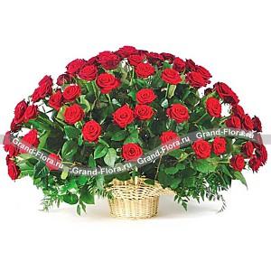 Букет из 101 розы ПримадоннаЕсли вы хотите покорить близкого вам человека и подарить ему незабываемые эмоции, то Примадонна - это идеальный цветочный сюрприз, который будет уместен на любом торжестве или станет шикарным знаком внимания. Букет роз – это беспроигрышная комбинаци...<br>
