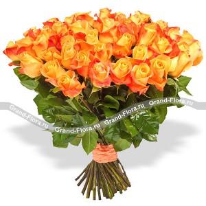 Оранжевое совершенство (51 роза)
