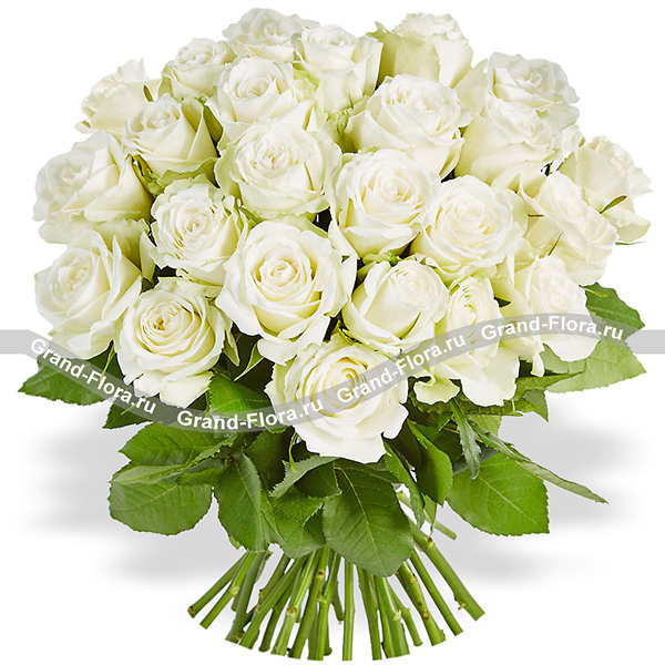 Афродита (25 роз) от Grand-Flora.ru