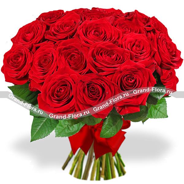 Восхищение (25 роз) от Grand-Flora.ru