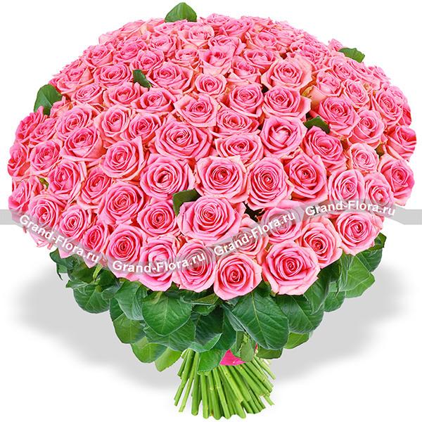 101 розовая роза (80 см) - букет из роз