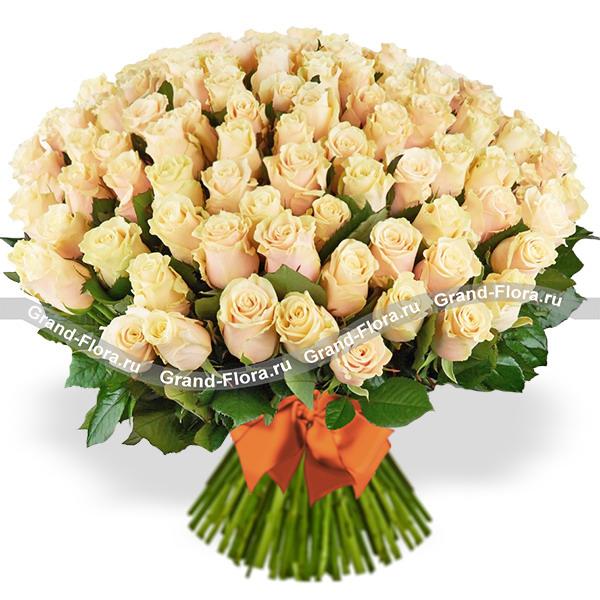 101 кремовая роза (40 см)
