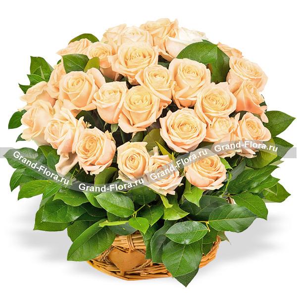 Букет из 51 кремовой розы - Желанный подарок от Grand-Flora.ru