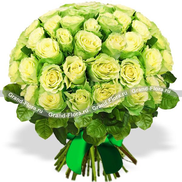 Букет из 51 зелёной розы - Комильфо