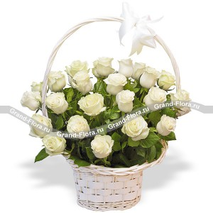25 white roses in a basket - Snow Queen
