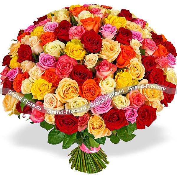 101 разноцветная роза (80 см) от Grand-Flora.ru