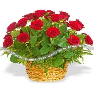Корзина 25 красных роз