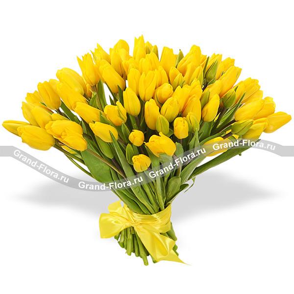 Тюльпаны Гранд Флора 101 желтый тюльпан фото