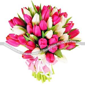 51 бело-розовый тюльпанВсе самые трепетные чувства о которых порой, не решаемся сказать способен выразить нежнейший букет из розовых и белоснежных тюльпанов.  Поверьте, это безоговорочно верный первый шаг к званию прекрасного принца!...<br>