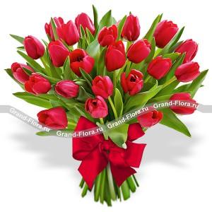 25 красных тюльпанов. Производитель: , артикул: 2696