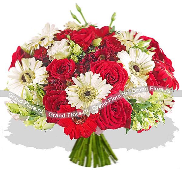 Восхитительный смешаный букет из алых роз и белых гербер