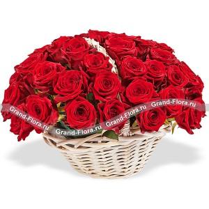 Танец любви - корзина красных роз...<br>
