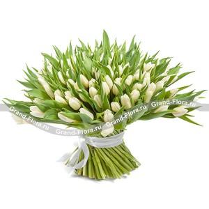 101 белый тюльпан - букет из тюльпанов
