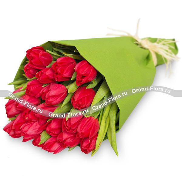 Тюльпаны Гранд Флора Изысканная роскошь фото