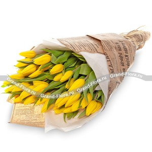 51 желтый тюльпан в крафт-бумагеТюльпан – это нежный и хрупкий цветок, который способен покорить своей красотой даже самое неприступное и ледяное сердце. А огромный букет желтых тюльпанов может стать для вас началом примирения с любимой девушкой или зажжет страсть в глазах сотрудн...<br>