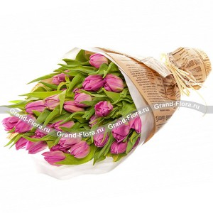 25 фиолетовых тюльпанов