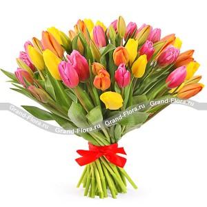 Разноцветное настроение - букет разноцветных тюльпанов
