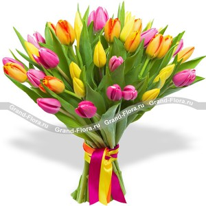 Весеннее солнце 51 тюльпанТюльпан – это нежный и хрупкий цветок, который способен покорить своей красотой даже самое неприступное и ледяное сердце. А огромный букет желтых тюльпанов может стать для вас началом примирения с любимой девушкой или зажжет страсть в глазах сотрудн...<br>