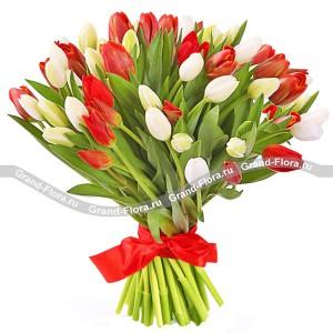 Фламенко 51 тюльпанВсе самые трепетные чувства о которых порой, не решаемся сказать способен выразить нежнейший букет из розовых и белоснежных тюльпанов.  Поверьте, это безоговорочно верный первый шаг к званию прекрасного принца!...<br>