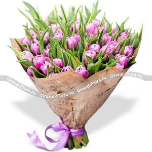 Маленькая ИталияТюльпан – это нежный и хрупкий цветок, который способен покорить своей красотой даже самое неприступное и ледяное сердце. А огромный букет фиолетовыхтюльпанов может стать для вас началом примирения с любимой девушкой или зажжет страсть в глазах сот...<br>