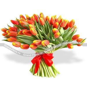 Рыжее счастье 51 оранжевый тюльпан