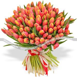 101 оранжевый тюльпанТюльпан – это нежный и хрупкий цветок, который способен покорить своей красотой даже самое неприступное и ледяное сердце. А огромный букет фиолетовыхтюльпанов может стать для вас началом примирения с любимой девушкой или зажжет страсть в глазах сот...<br>