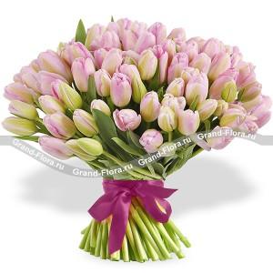 101 нежно-розовый тюльпанТюльпан – это нежный и хрупкий цветок, который способен покорить своей красотой даже самое неприступное и ледяное сердце. А огромный букет фиолетовыхтюльпанов может стать для вас началом примирения с любимой девушкой или зажжет страсть в глазах сот...<br>