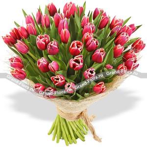 Букет из 51 розового тюльпанаВсе самые трепетные чувства о которых порой, не решаемся сказать способен выразить нежнейший букет из розовых и белоснежных тюльпанов.  Поверьте, это безоговорочно верный первый шаг к званию прекрасного принца!...<br>