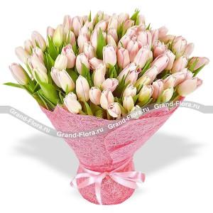 101 нежно-розовый тюльпан в упаковкеТюльпан – это нежный и хрупкий цветок, который способен покорить своей красотой даже самое неприступное и ледяное сердце. А огромный букет фиолетовыхтюльпанов может стать для вас началом примирения с любимой девушкой или зажжет страсть в глазах сот...<br>