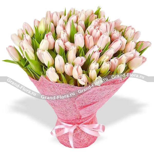 101 нежно-розовый тюльпан в упаковке