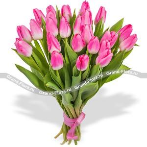 25 розовых тюльпанов...<br>