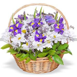 Аромат весны - корзина из ирисов и хризантем
