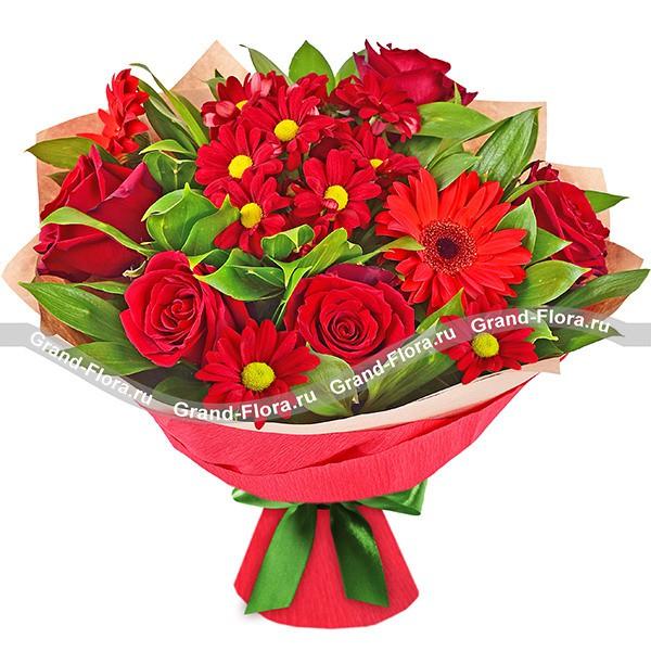 Красное великолепие - букет из роз и гербер