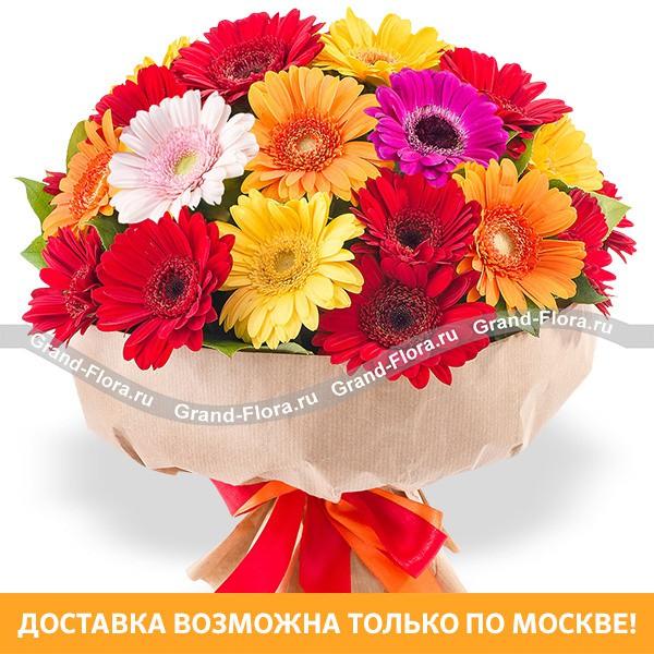 Милое счастье - букет из разноцветных минигербер