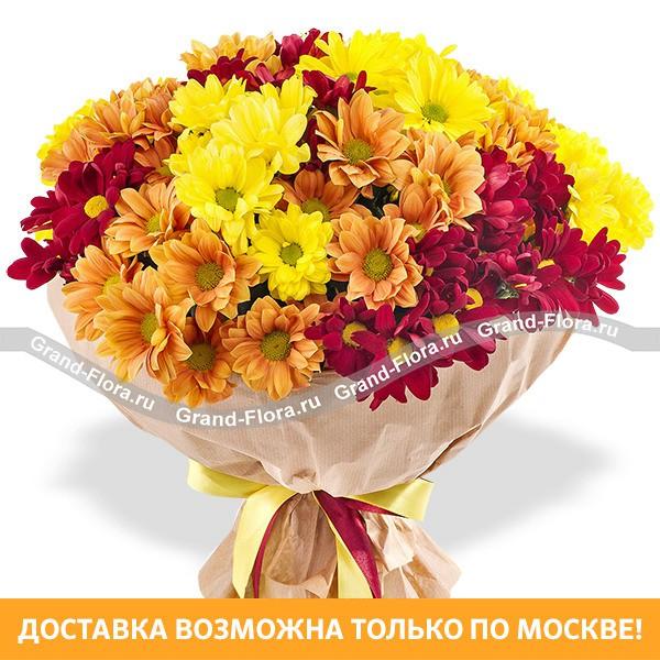 Радость дня - букет из разноцветных хризантем