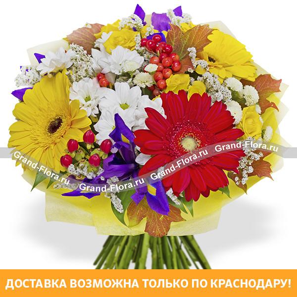 Акция для Краснодара Гранд Флора Осеннее утро - букет из желтых гербер и белой хризантемы фото