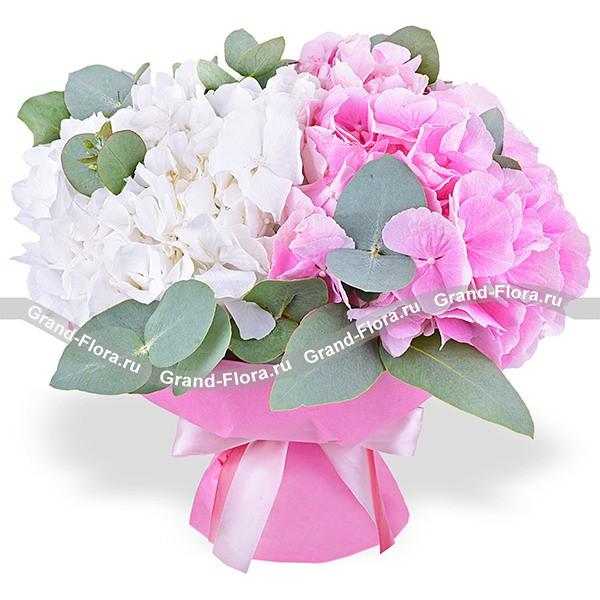 Утонченность - букет из розовой и белой гортензии