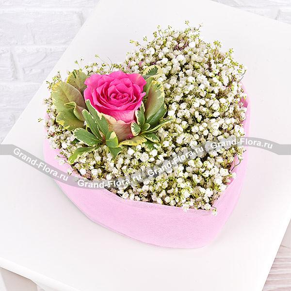 где купить Цветы Гранд Флора GF-2018-02-28 по лучшей цене