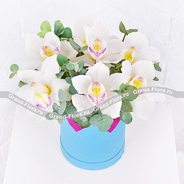 Нежность весны - коробка с белыми орхидеями