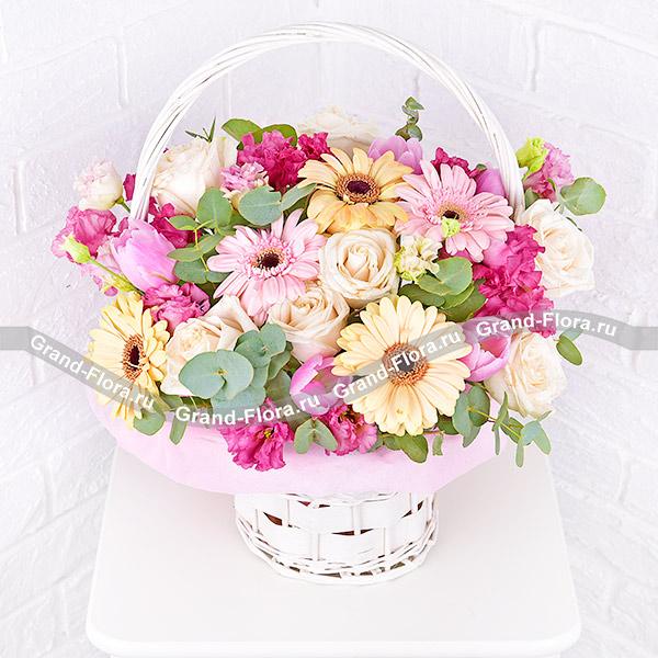 Нежный взгляд - корзина с розовыми герберами и тюльпанами