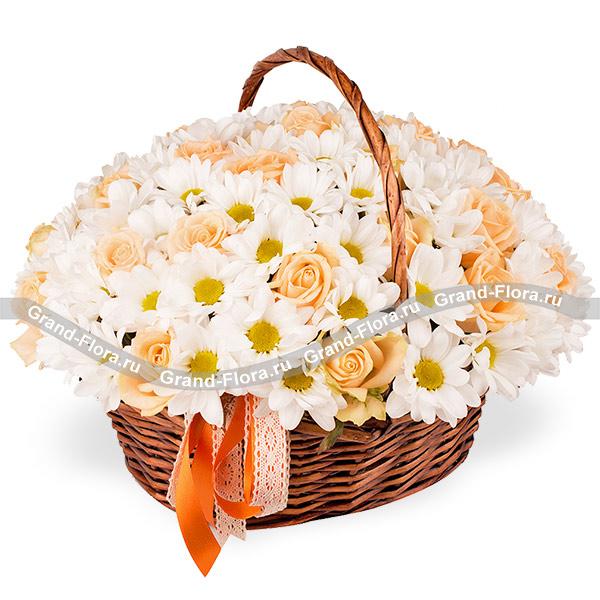 Цветы Гранд Флора GF-3333 htc t 3333 touch