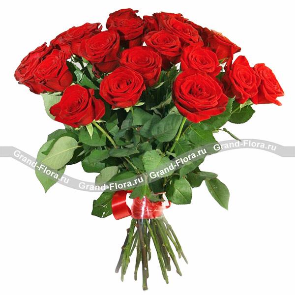 Монобукет красных роз - букет из красных роз