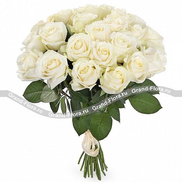 Монобукет белых роз - букет из белых роз