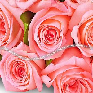 Букет розовых розБукет розовых роз – ничего лишнего. Аристократично, продуманно, изысканно. Универсальный подарок для любого торжества, виновник которого будет просто сражен роскошью букета. Выразите свое восхищение, с помощью крупных розовых цветов и добавьте немн...<br>