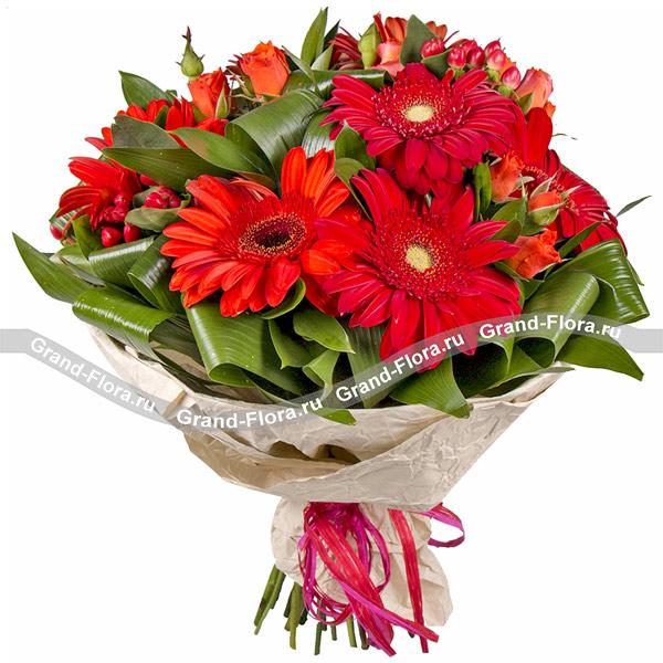 Цветы Гранд Флора Пестрое настроение - букет гербер и гиперикума фото