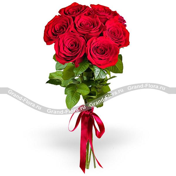 Розы поштучно Гранд Флора 7 красных роз (70 см) фото