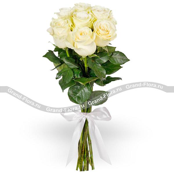 7 белых роз (70 см) фото