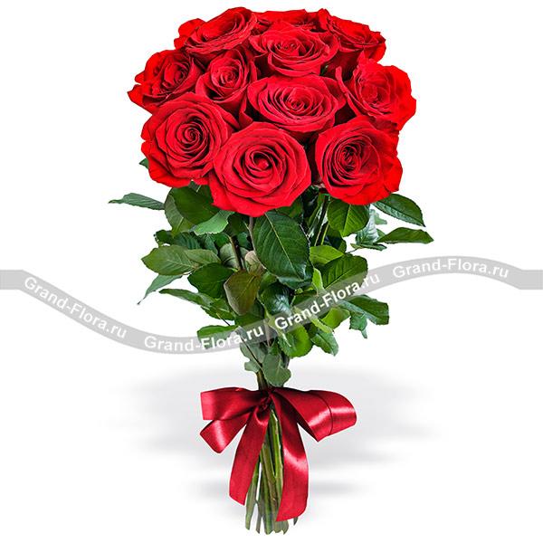 11 красных роз (70см) фото