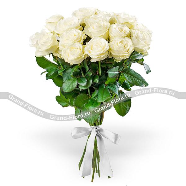 15 белых роз (70см) фото