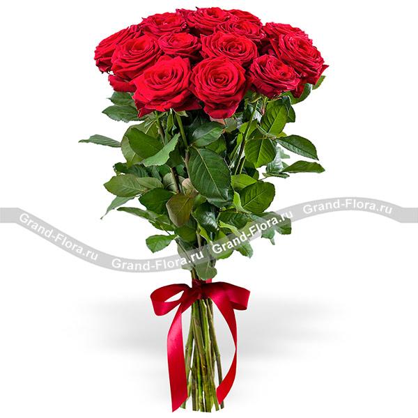 15 красных роз (70см)